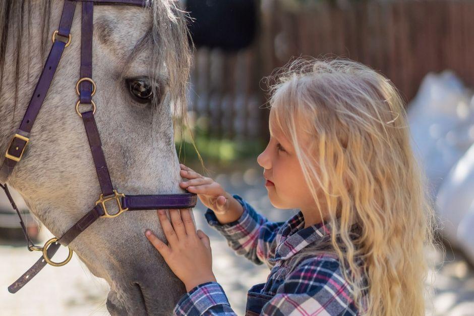 équithérapie bienfaits enfants autistes
